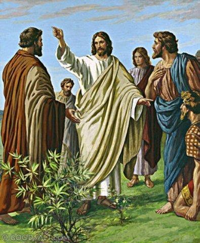 yesus-mengutus-misi-yang-duabelas