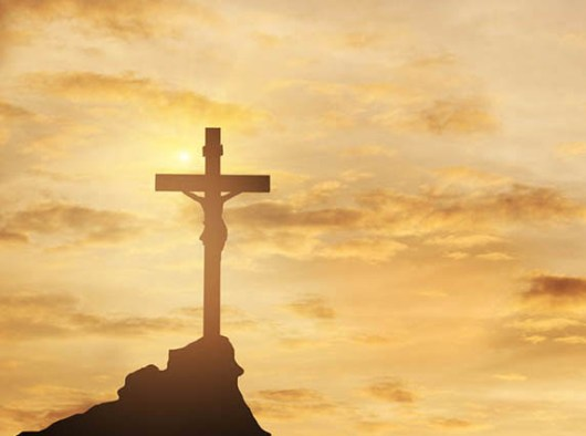 """Foto diambil dari web """"Our Daily Bread"""""""