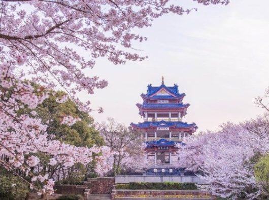 Foto: Taoist Temple (©Lindsey - stock.adobe.com)
