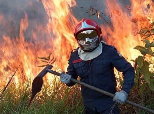 Seorang petugas pemadam kebakaran Rio Branco melawan api di Amazon Brazil (ANSA)