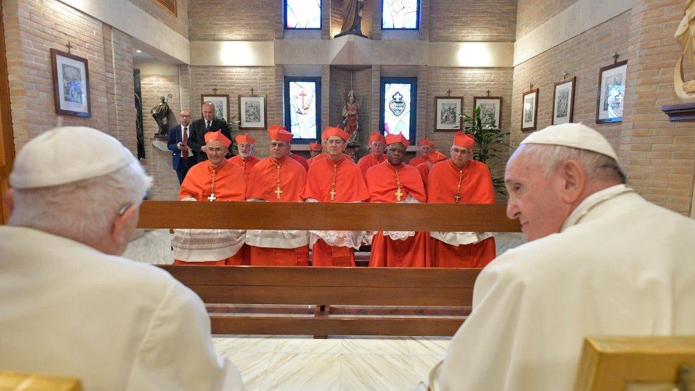 Kardinal Baru 2