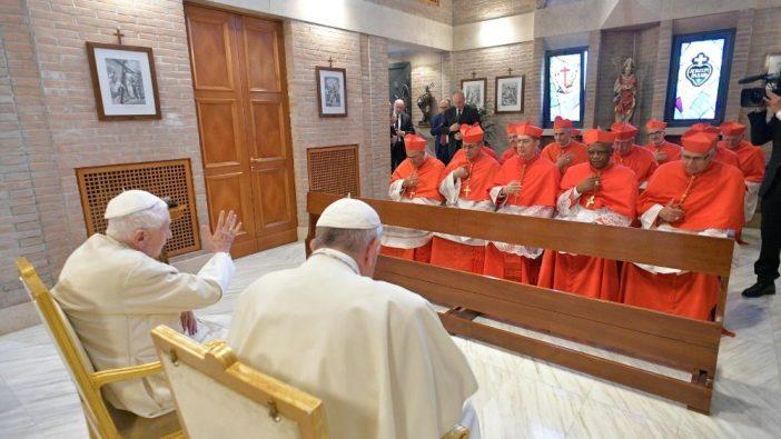 Kardinal Baru 4