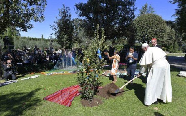 Paus menanam pohon holm di Taman Vatikan (Vatican Media)