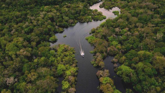 Hutan hujan Amazon (AFP)