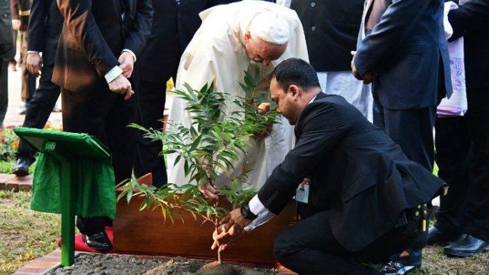 Paus menanam pohon dalam kunjungannya ke Bangladesh 30 November 2017 (AFP)